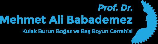 Prof. Dr. Mehmet Ali BABADEMEZ